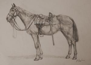 Cavalry Horse smpix cr