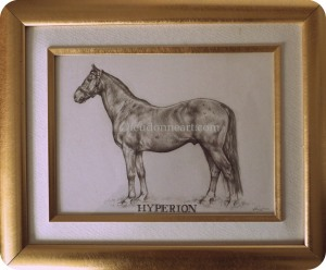 Hyperion framed smpix cr