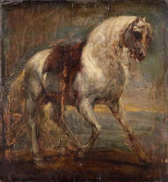 552px-van_dyck_sir_anthony_-_a_grey_horse_-_google_art_project