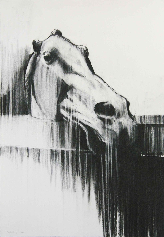 caballo-i-91-x-63cm-2006