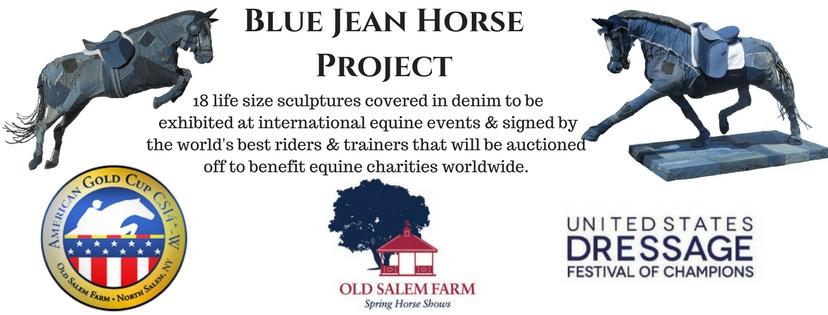 Blue Jean HorseProject.jpg