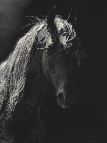Saddlebred-450x600
