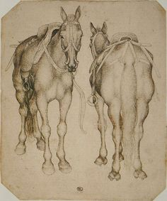 b39c96cba0cc60bf6a381b16e928409e--horse-drawings-animal-drawings