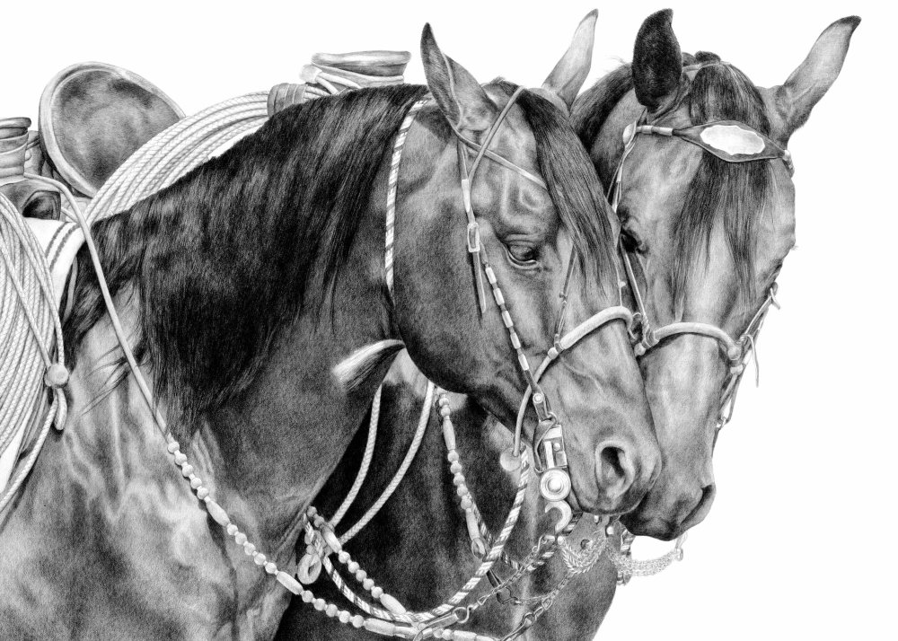 HorseWhispersweb