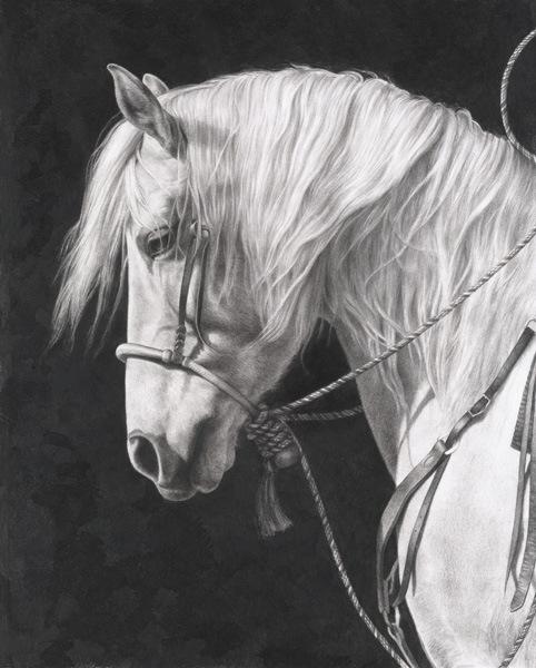 web Horse091812 cc rt