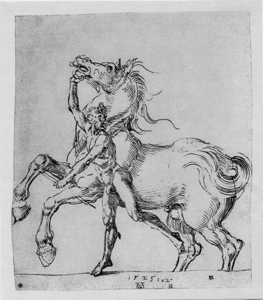 A.Duerer, Nackter Mann mit Pferd - A.Duerer, Nude Man with Horse / 1525 -