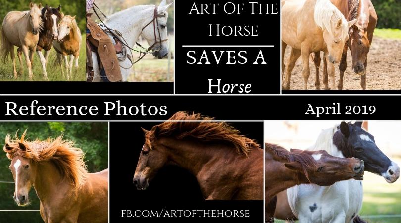 Ref images.jpg